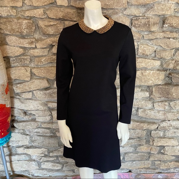 J. McLaughlin Dresses & Skirts - J.McLaughlin Black Dress wLeopard Collar Size S